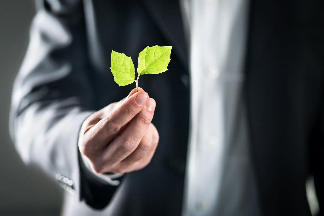 Il manager della sostenibilità