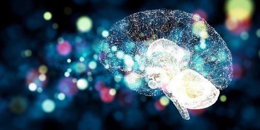 L'intelligenza Emotiva: come utilizzarla per potenziare la leadership