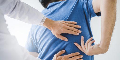 Nuovo corso: La prevenzione dei disturbi muscolo-scheletrici derivanti dalla movimentazione manuale dei carichi: ruolo del medico competente e del RLS - Corso aggiornamento per RLS (8 ore)